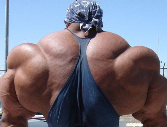 Huge Bodybuilders
